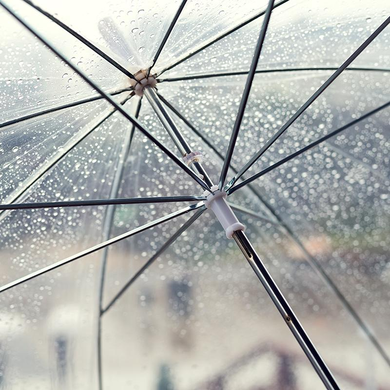 Clear Umbrella - Hero