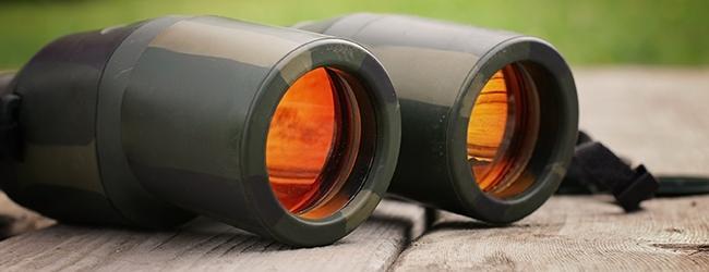 Accent Image_Binoculars