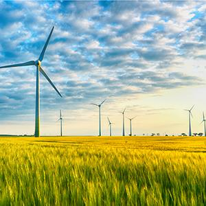 Accent - Windmills - Square